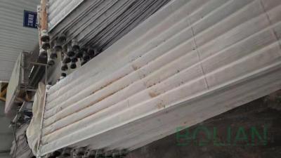 【博联过滤】叶滤机滤布过滤发现精液跑混注意事项